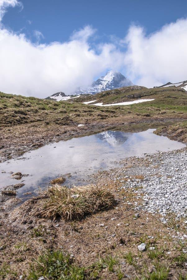 De bezinning van de Eiger-berg in het water royalty-vrije stock afbeeldingen
