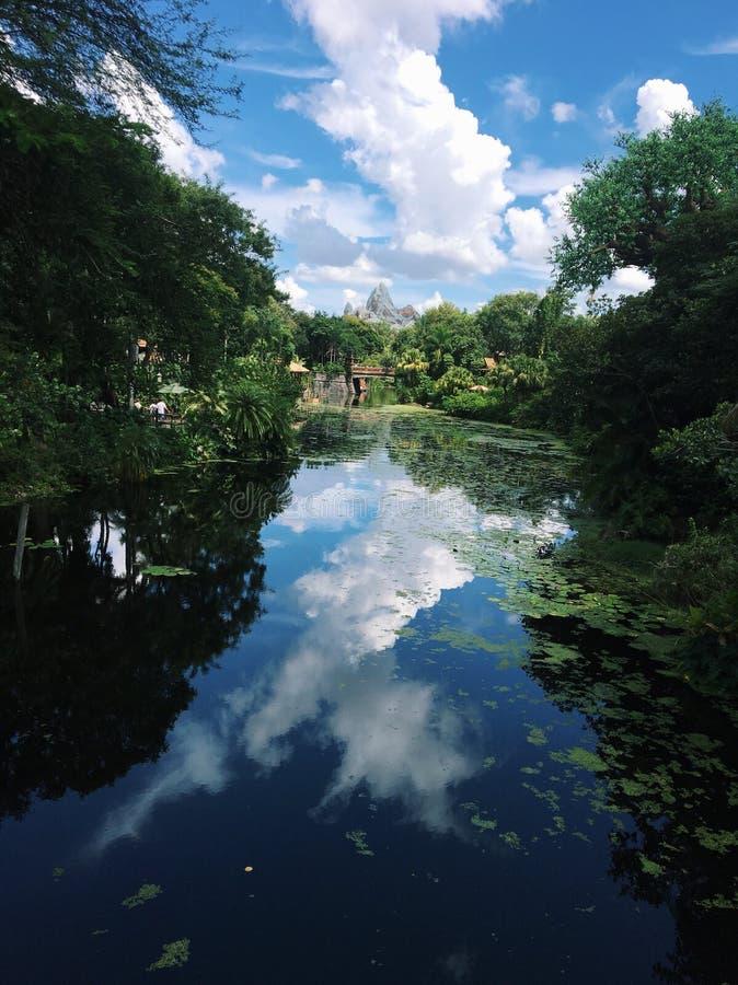 De bezinning van de hemel in het water stock foto's