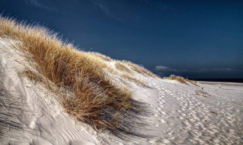 De bezinning van wolken in een nat zand stock afbeelding