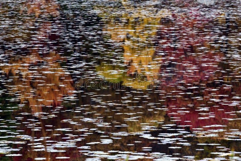 De bezinningen van de herfst royalty-vrije stock foto