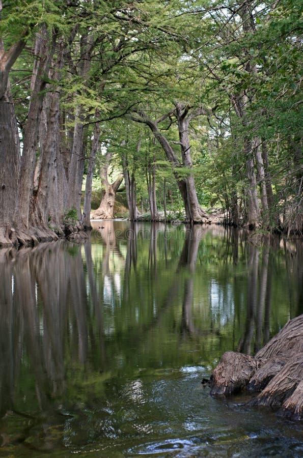 De Bezinningen van de rivier stock foto