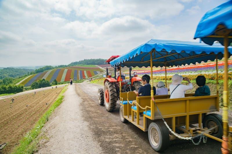 De bezoeker die vrachtwagen nemen om de beroemde en mooie Panoramische Bloem te bezoeken tuiniert shikisai-geen-Oka stock fotografie