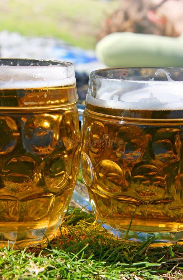 De bieren van de picknick stock afbeelding