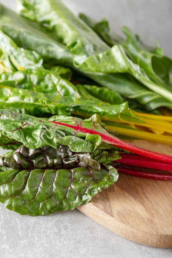 De biet maakt typicaly blad van het voedsel van de bieteninstallatie voor dieetarmen in groen vet stock foto