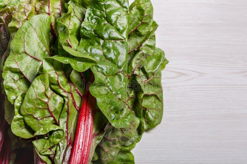 De biet maakt typicaly blad van het voedsel van de bieteninstallatie voor dieetarmen in groen vet stock fotografie