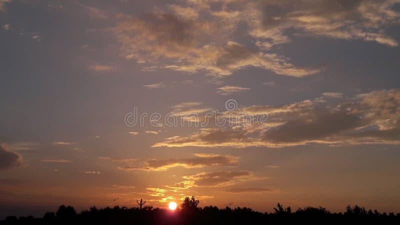 De bihar zonsondergang van India stock foto