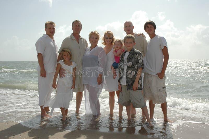 De Bijeenkomst van de familie stock afbeeldingen