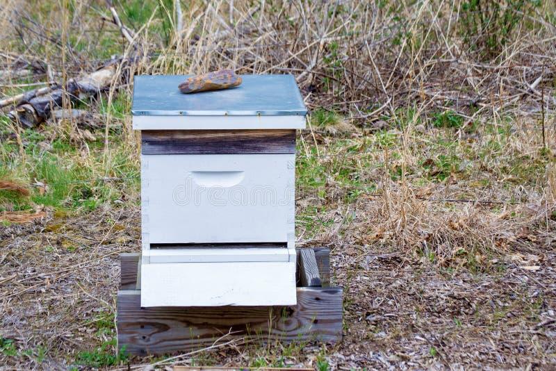 De Bijenkorf van de Farmer'sbij stock foto's