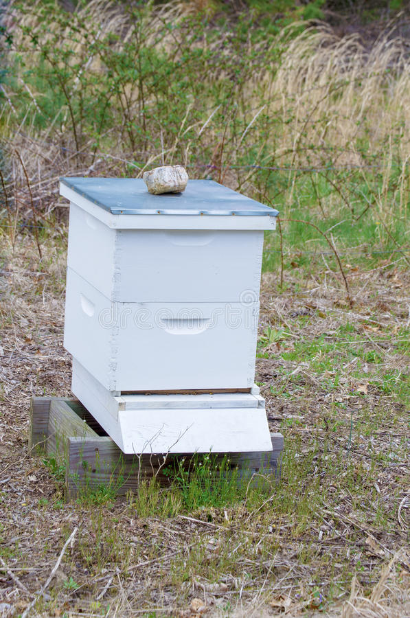 De Bijenkorf van de Farmer'sbij stock foto