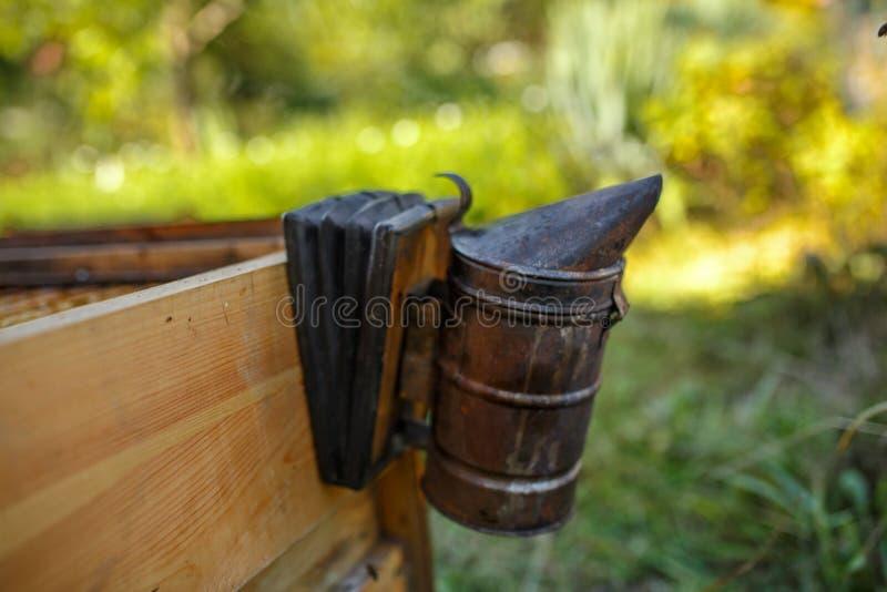 De bijenroker installeerde op houten behive Technologie van beroking van bijen Bedwelmende rook voor veilige honingsproductie royalty-vrije stock foto's