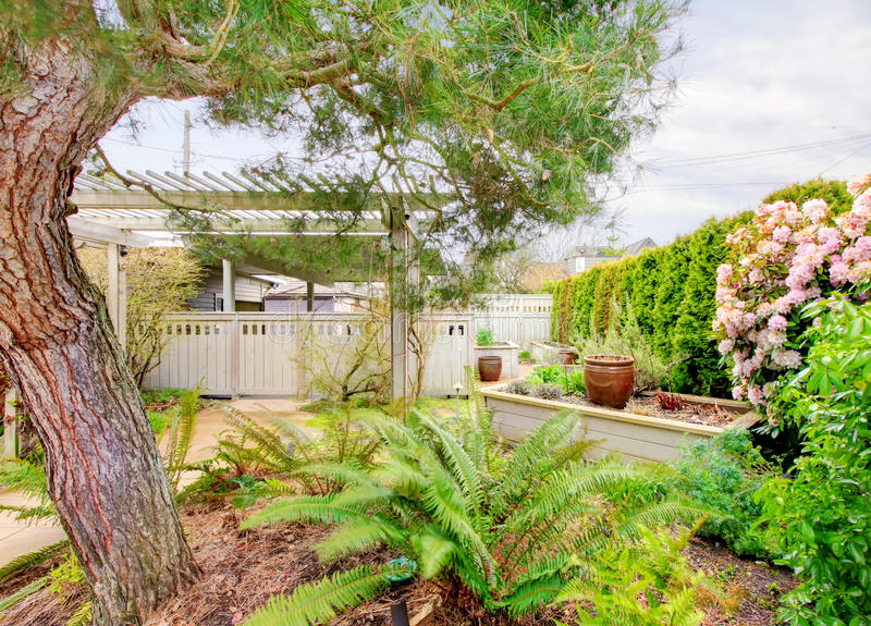 De binnenplaats van de lente met tuinbedden royalty-vrije stock foto