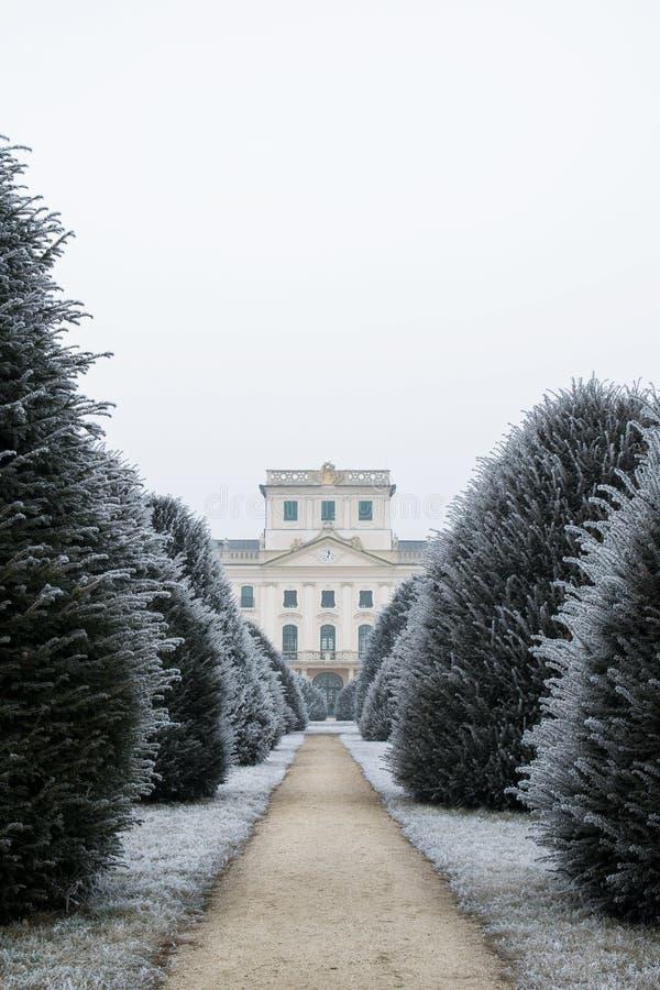 De binnenplaats van het Esterhazykasteel in de winter met taxussen, Fertod stock foto's