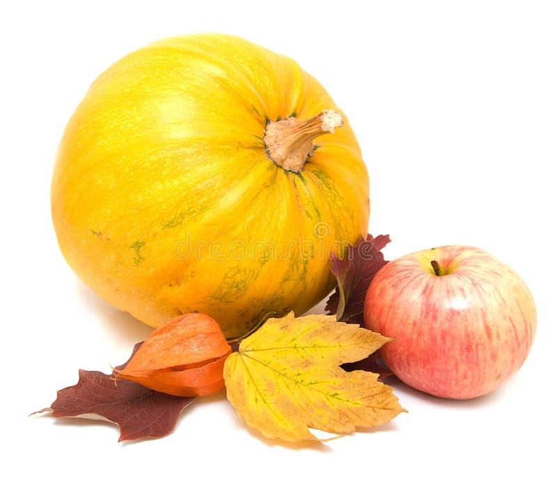 De bladeren, de appel en de pompoen van de daling royalty-vrije stock fotografie