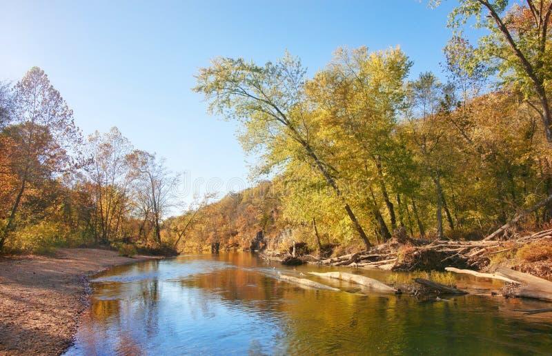 De bladeren en de bomen van de herfst op rivier royalty-vrije stock fotografie