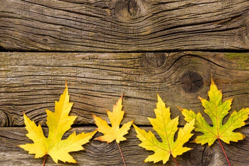 De Bladeren van de herfst over houten achtergrond Daling Hout met exemplaarruimte royalty-vrije stock afbeeldingen