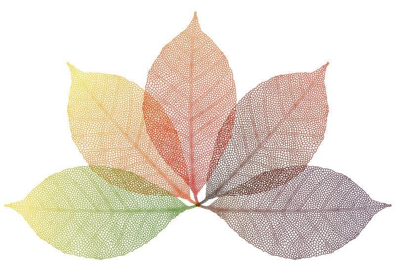 De bladeren van de herfst, vector vector illustratie