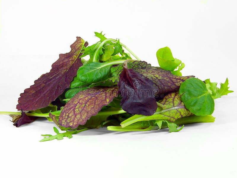 De Bladeren van de salade stock foto's