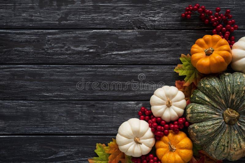 De bladeren van de de herfstesdoorn met Pompoen en rode bessen op oude houten achtergrond Thanksgiving dayconcept stock fotografie
