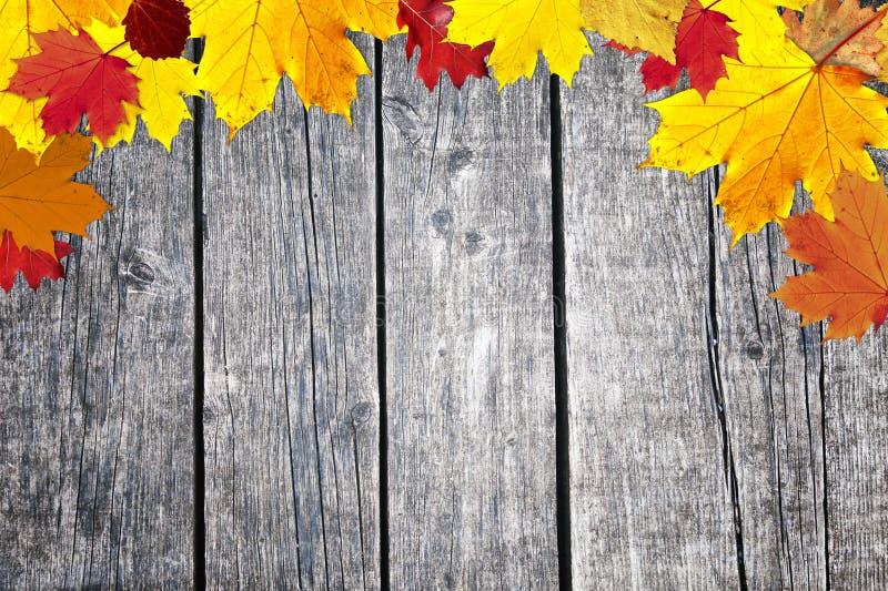 De bladeren van het dalingsseizoen op oude houten achtergrond stock foto's