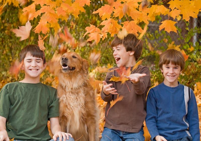 De Bladeren van jongens in de herfst royalty-vrije stock afbeelding