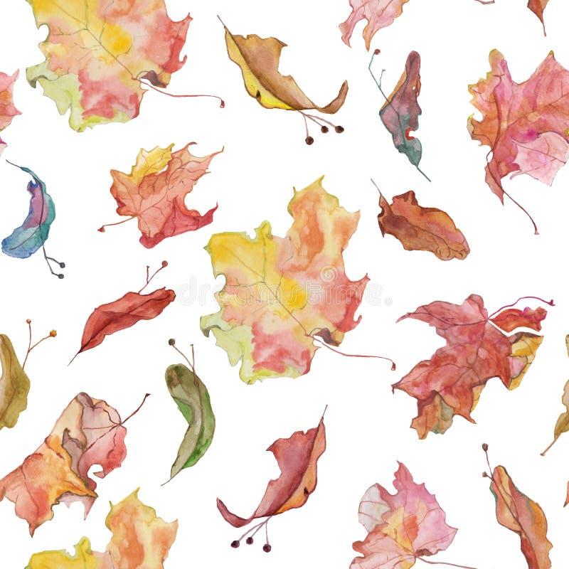 De bladeren van de Watercolour kleurrijk esdoorn en van lindezaden patroon royalty-vrije illustratie