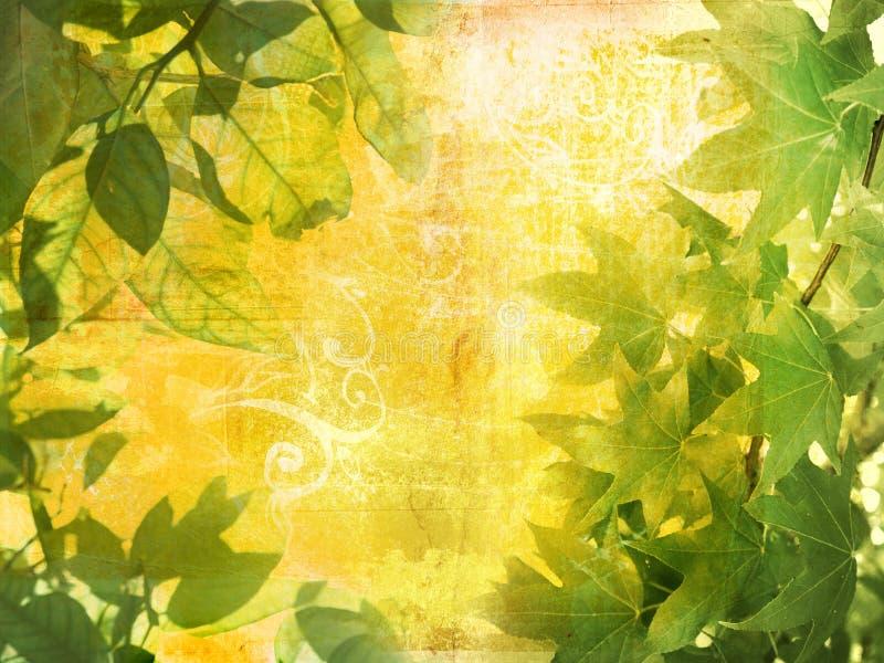 De bladerenachtergrond van Grunge vector illustratie