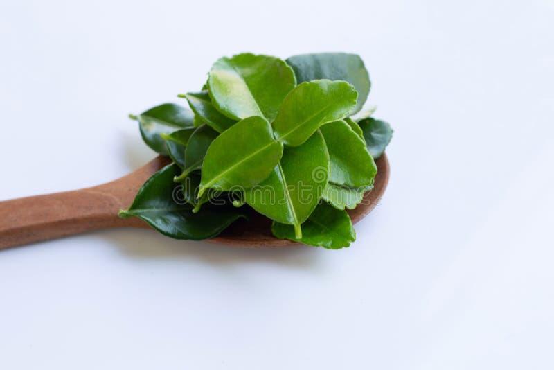 De bladerenkruid van de bergamot kaffir kalk op houten lepel op witte backgr stock afbeelding