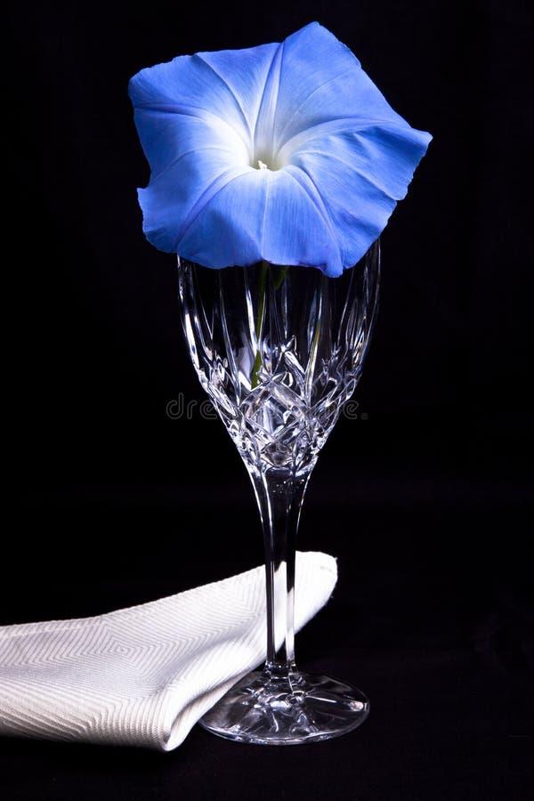 De blauwe bloem van de ochtendglorie met kristalglas stock fotografie