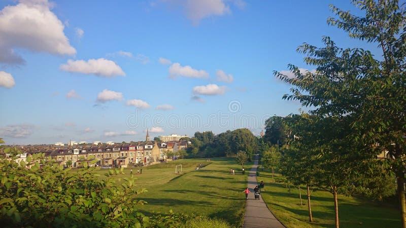 De blauwe hemel van de gebiedszomer stock foto