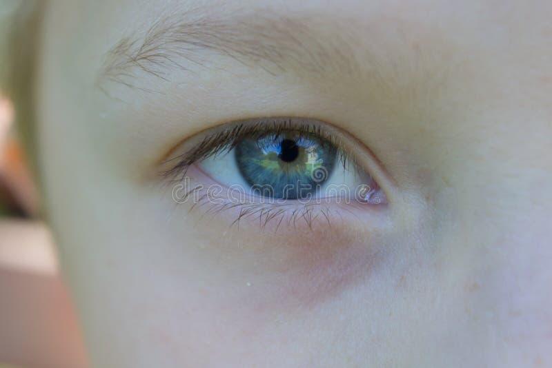 De blauwe Jongen van Ogen stock afbeeldingen