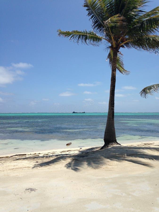 De Blauwe Mening San Pedro, Amber Caye Belize van de Caraïbische Zee royalty-vrije stock fotografie