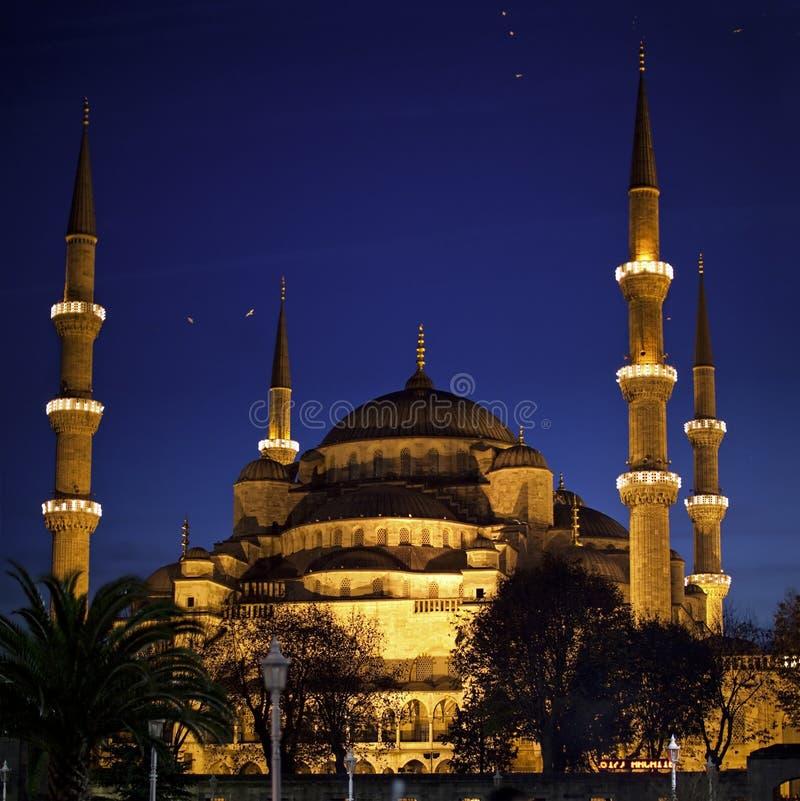 De blauwe Moskee royalty-vrije stock foto's