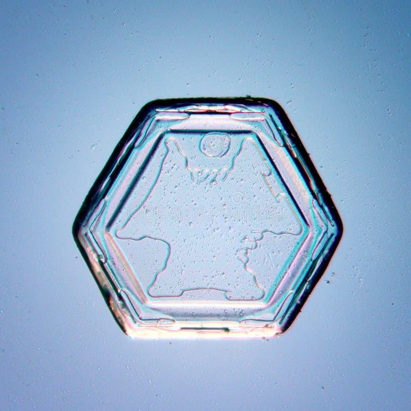 De blauwe natuurlijke macro van de kristalsneeuwvlok stock afbeelding