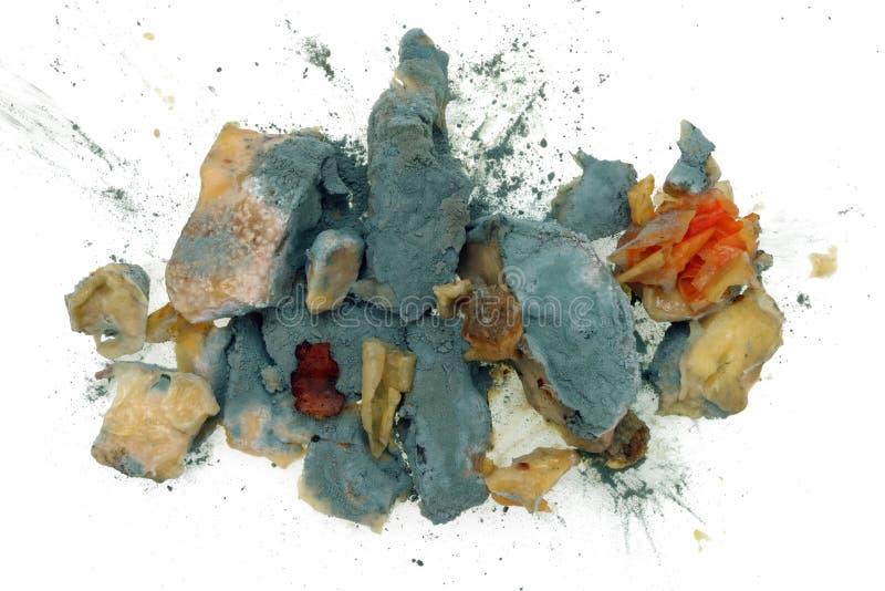 De blauwe Penicilline van de voedselvorm stock afbeelding