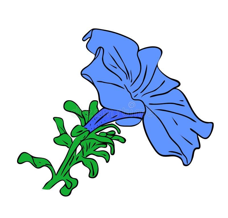 De blauwe vier uurbloem met groen doorbladert geïsoleerd op witte achtergrond, overzichtshand geschilderde tekening royalty-vrije illustratie