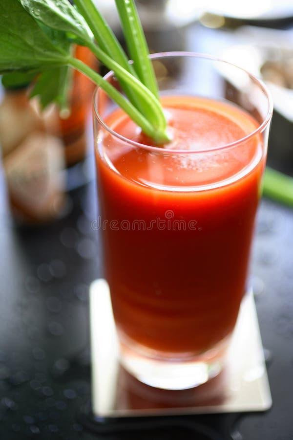 De bloedige cocktail van Mary in glas royalty-vrije stock foto