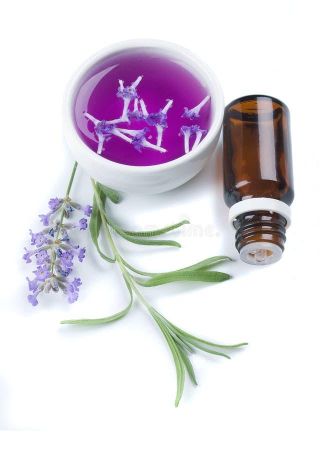 De bloem en het uittreksel van de lavendel stock afbeeldingen