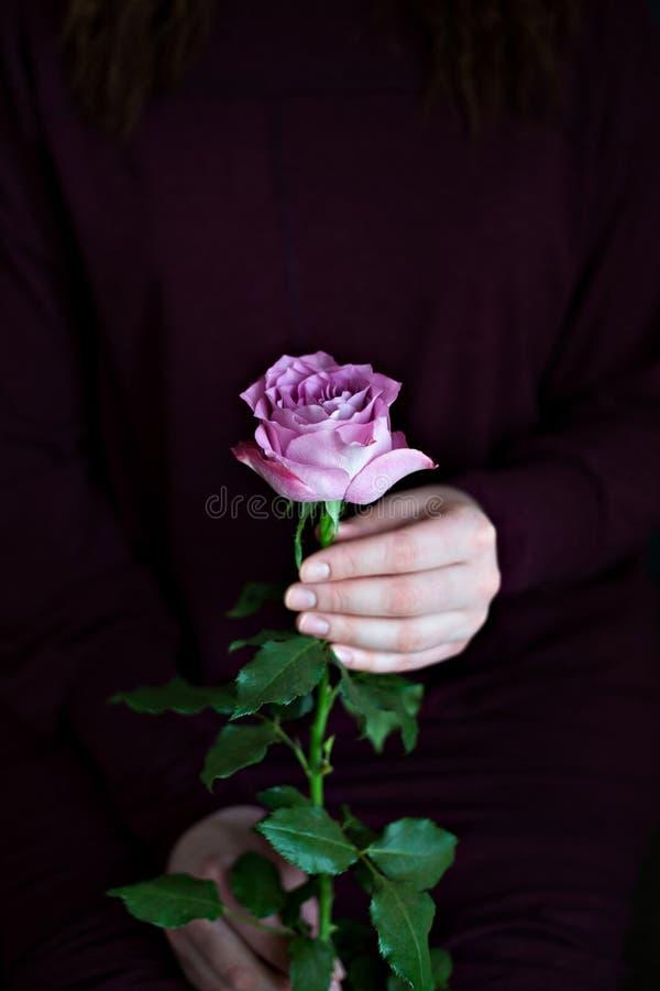 De bloem nam hand vrouwelijke donkere romantische sensueel als achtergrond toe stock afbeeldingen