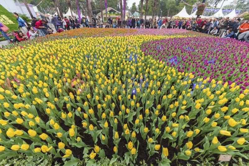 De bloem toont in Hongkong royalty-vrije stock afbeeldingen