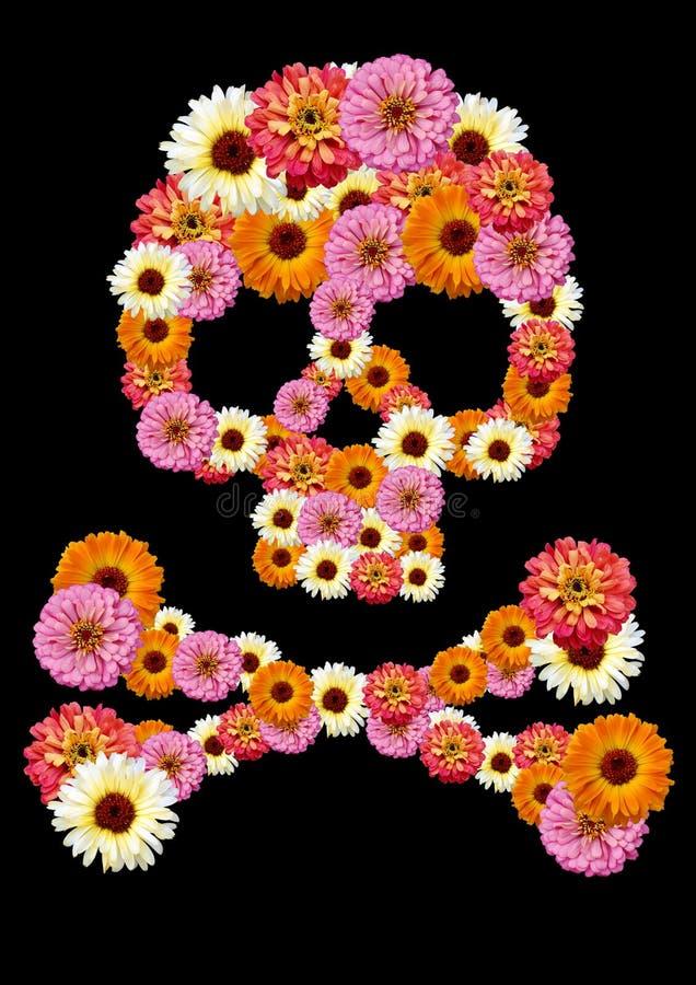 De bloem van de schedel stock fotografie