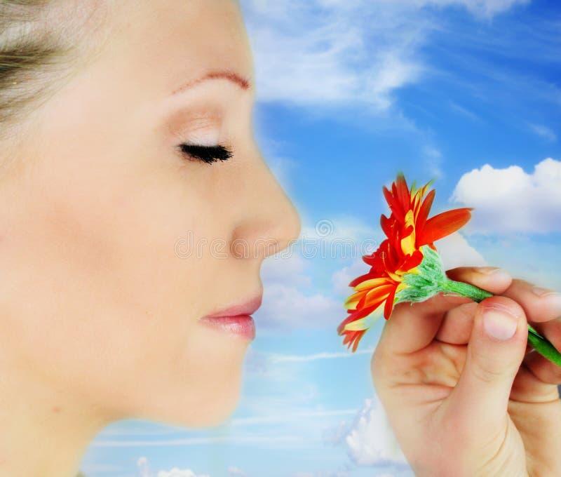 De bloem van de schoonheid stock foto