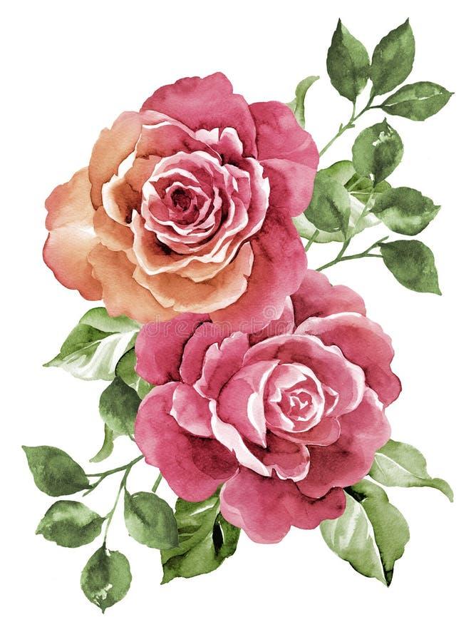 De bloem van de waterverfillustratie royalty-vrije stock afbeeldingen