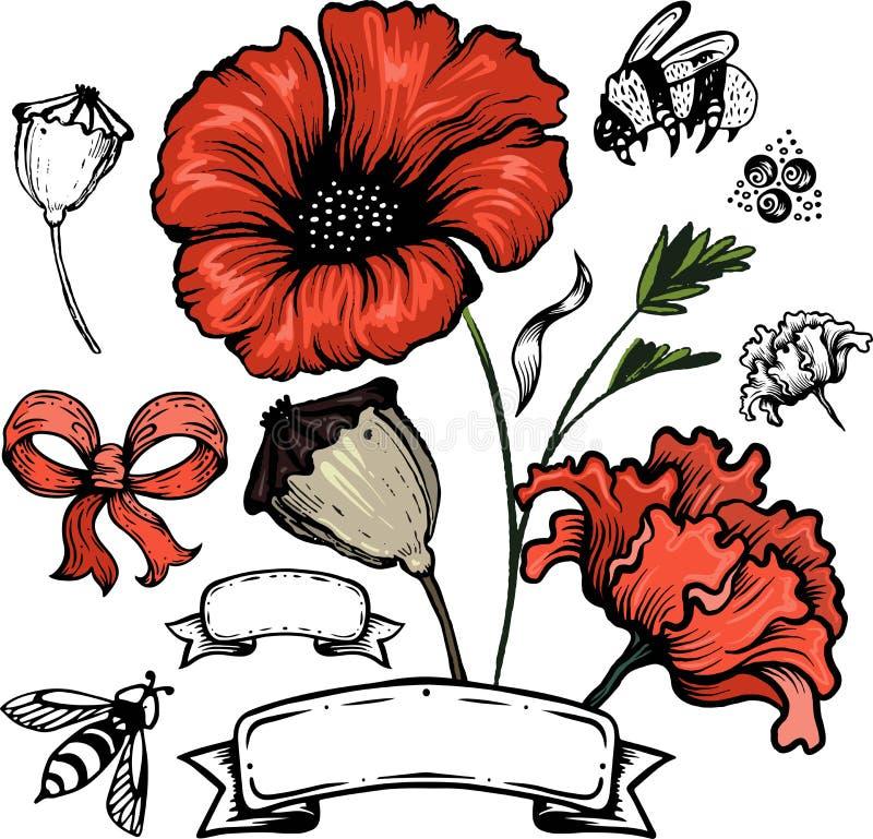 De bloem van de papaver Rode die papavers op witte achtergrond worden ge?soleerdc vector illustratie
