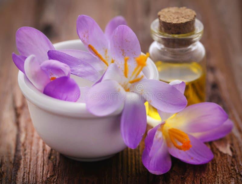 De bloem van de saffraankrokus met uittreksel in een fles royalty-vrije stock foto's