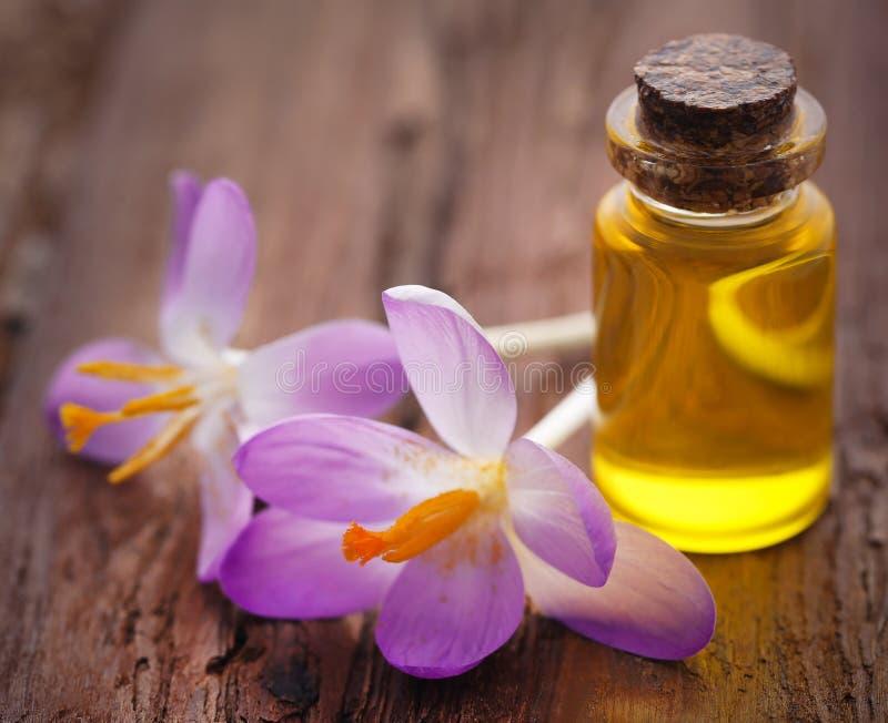 De bloem van de saffraankrokus met uittreksel in een fles royalty-vrije stock fotografie