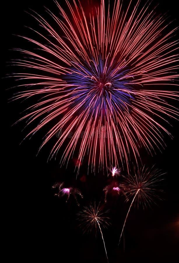 De bloem van Vuurwerk stock afbeelding