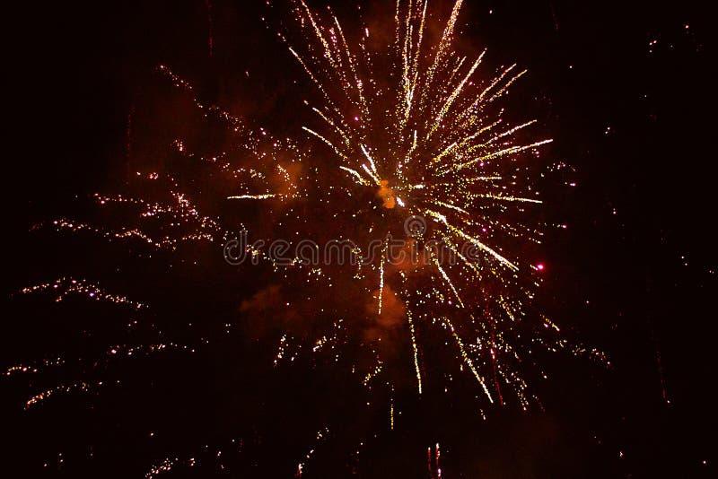 De bloem van de vuurwerkraket in de nachthemel royalty-vrije stock foto
