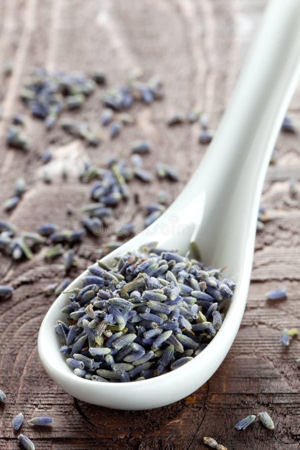 De bloemblaadjes van de lavendel op lepel stock afbeeldingen