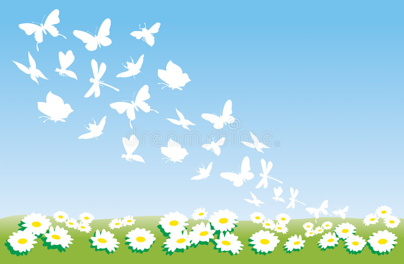 De bloemen en de vlinders van de zomer royalty-vrije illustratie