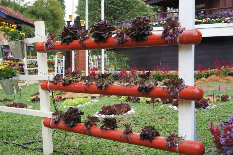 De bloemen en de groenten worden geplant verticaal in metaalpotten en pvc-pijpen stock fotografie